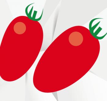 tomate allongée