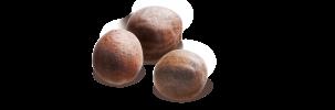 chou pomme_semences.png